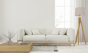 Upholstery cleaning - clean couch