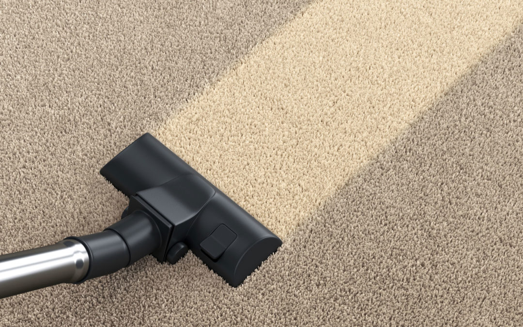 Carpet Cleaning from Thoroclean – Helping Your Home Look its Best