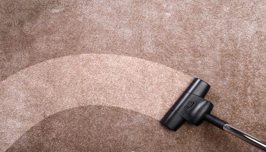 3 Reasons Why You Need a Professional Carpet Cleaning
